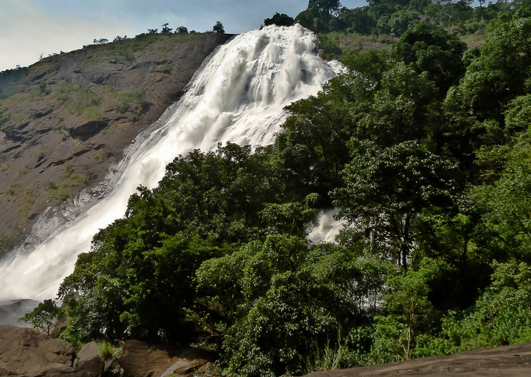 Want to make your tour memorable: Contact Tour operators in Odisha