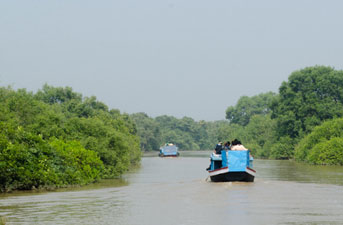 bhitarkanika-national-park