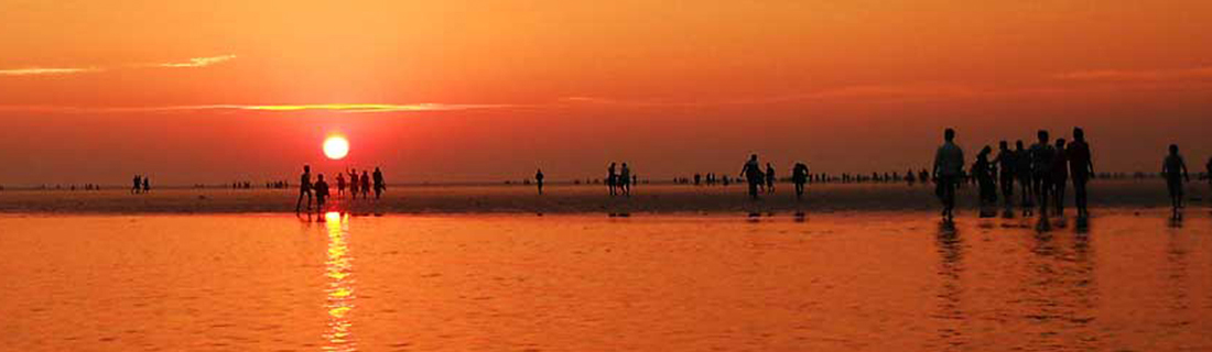 Diamond Triangle of Odisha With Chilika - Patra Tours And Travels